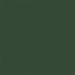 41123 green titicaca