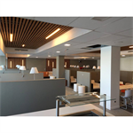 ceiling panels neoclin®-pm-25x70-75