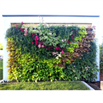 green wall with buckets