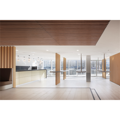 linea 2.4.3 suspended ceiling