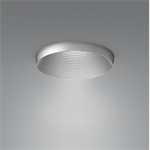 Pelee Downlight