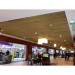 lauder linea 2.6.10 plafond