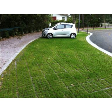 100% vegetal on fertile foundation - complete O2D system