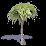 palme 1