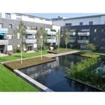 Garden Roof System Solution