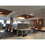 ceiling panels neoclin®-pm-25x40-35
