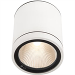 MILO XL (Ceiling Mounted)