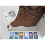 linea swell suspended ceiling