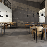 Collection Evolution colour Taupe Floor Tiles