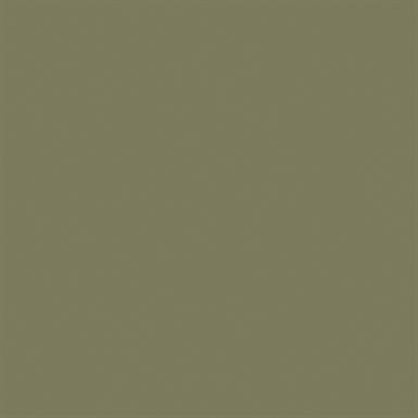30896 ANODITE BEIGE C32