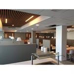 Panneaux de plafonds suspendus NEOCLIN®-PM-40x25-35