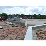 blue roof meander fkm 30 system solution