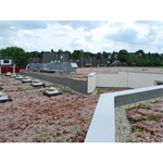Blue Roof Meander FKM 30 System Solution
