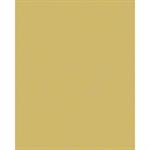 gold brushed look  brushed look  aluminiumblech