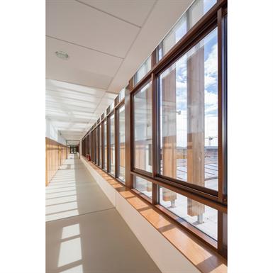 Curtain Wall - KADRILLE AA100 50mm SSG