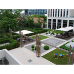 public roof  type pedestrian system solution