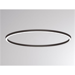 ride ring surface