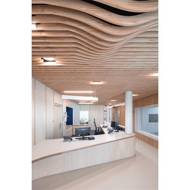 LINEA SHAPE Suspended ceiling