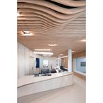 linea shape suspended ceiling
