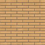 Half brick thick, perforated facing brick masonry. LP11,5-cv