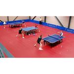 taraflex table tennis