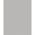anodic silver metallic  standard  tôle en aluminium prélaqué