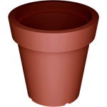 extravase flower pot