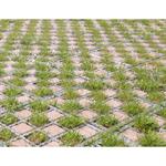 checkerboard grass / paving stones