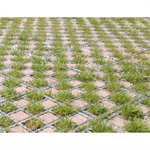 Checkerboard grass / paving stones
