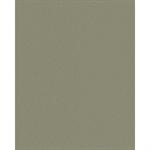 champagne metallic  standard    aluminium sheet