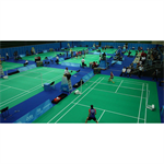 tarafalex badminton