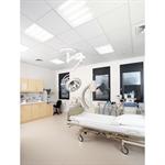 hygienic ceiling