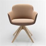 danae – meeting chair