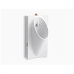 """steward® hybrid high-efficiency urinal with 3/4"""" top spud"""