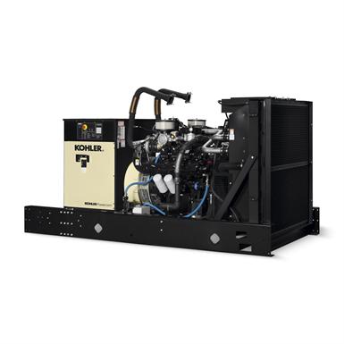 250RZXB, 60 Hz, Propane, Industrial Gaseous Generator