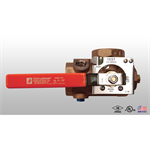Model 1011 TESTanDRAIN® - Single Handle Ball Valve