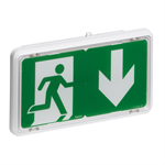 self-contained emergency lighting autotest-addressable luminaire