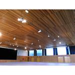 lauder linea 2.4.6 plafond