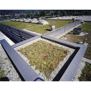 WARM EXTENSIVE GREEN ROOFING SYSTEM WITH SARNAFIL® TG-66 (SINGLE PLY