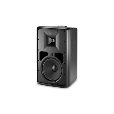 Control 31 Two-Way High-Output Indoor-Outdoor Monitor Speaker