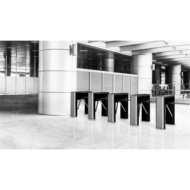 TURNSTILE TRILANE TL2 (Automatic Systems) | Free BIM object