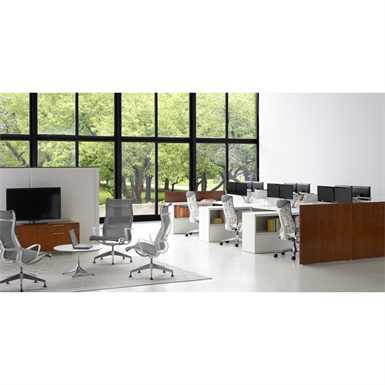 CANVAS OFFICE LANDSCAPE TYPICALS (Herman Miller Inc ) | Free