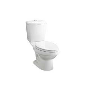 KARSTEN LUXURY HEIGHT 12 ROUGH IN TOILET WITH DUAL FORCE FLUSHING TE