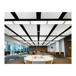 Capz™ MetalWorks™, Optima®, and Spectra™ Acoustical Ceiling System